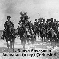Birinci Dünya Savaşındaki büyük savaşlar: Brusilovsky atılımı 79